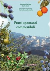 Frutti spontanei commestibili